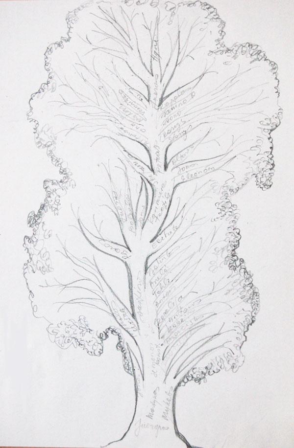 Kaip piesti gimines medi